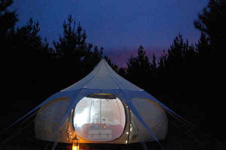 Adventure Package. MTB and Glamping in Wanaka! - Zelt