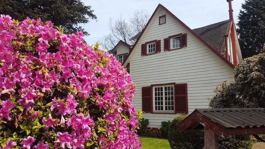 Enjoy Valdivia from a traditional house - Valdivia