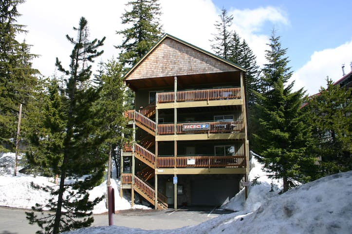 Boardwalk Lodge:  Sleeps 48   w/Two Hot Tubs