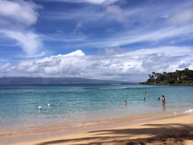 Napili Ridge, Maui ~ G1 ~ Garden View - Lahaina