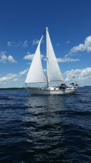 Sign up for a half day cruise with Captain Susan Smith