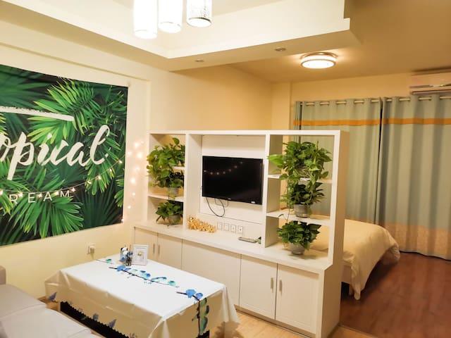 尚书房连卡福商业广场附近一室一厅公寓 青蔓绿植浪漫单身公寓 青蔓