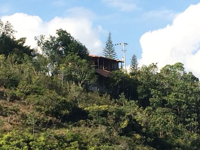 Cabaña ideal para descansar en la naturaleza - La Mesa - Nature lodge