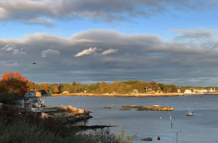 Shoreline Treasure in Lanphiers Cove