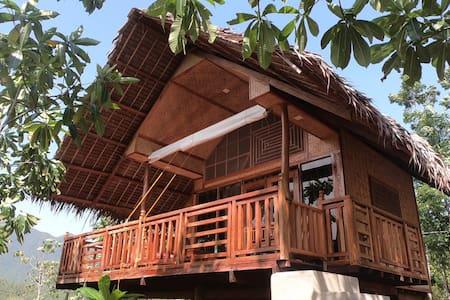 Villa Nagtabon - Nagtabon Beach - Coco's hut