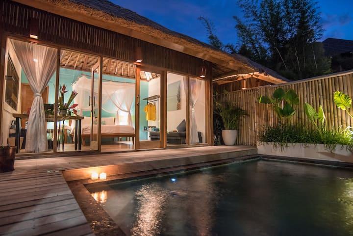 1-BR Private pool Villa 5mins to La Brisa