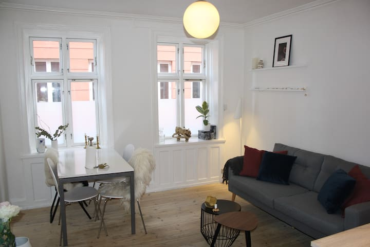 Cosy center of Frederiksberg apartment