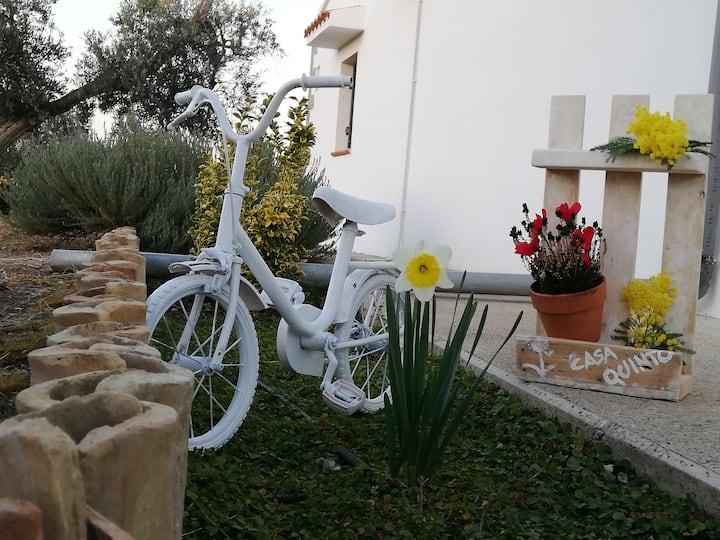 Villa Quinto