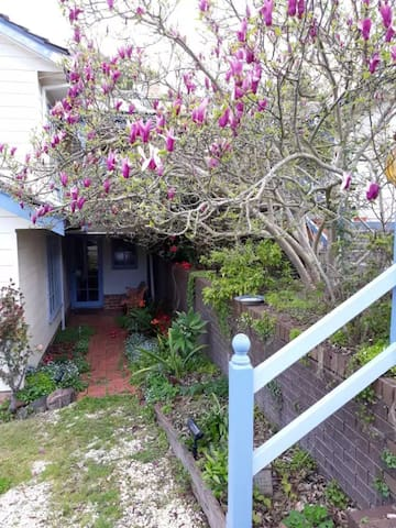 Front entrance to cottage with  Beautiful Magnolia Tree.