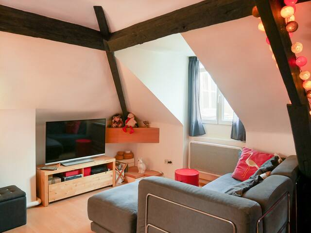The cosy attic apartment, east Paris