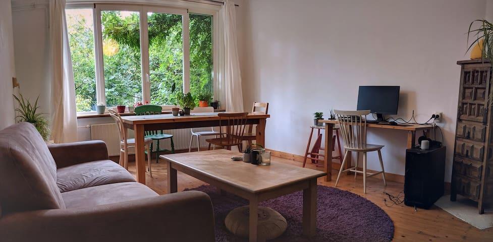 Sunny Room in Amsterdam