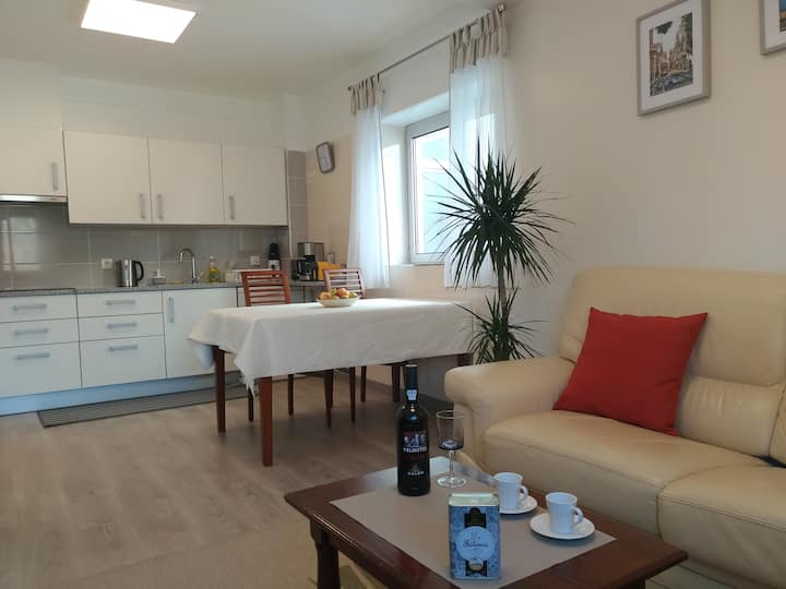 Apartment (A) 300 meters from Sanctuary os Fatima