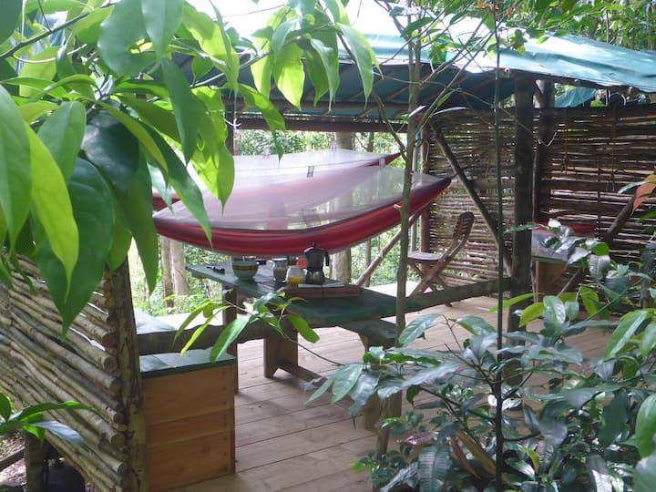 Une nuit insolite au Hamac Camp de Guadeloupe