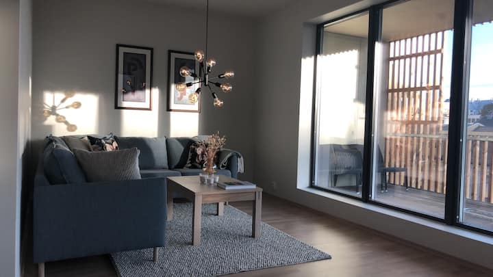 Ny leilighet, new apartment all amenities, Moss
