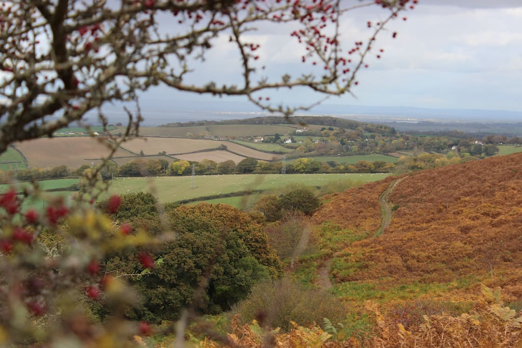 The Quantock Hills, a short walk from Groom's Cottage.