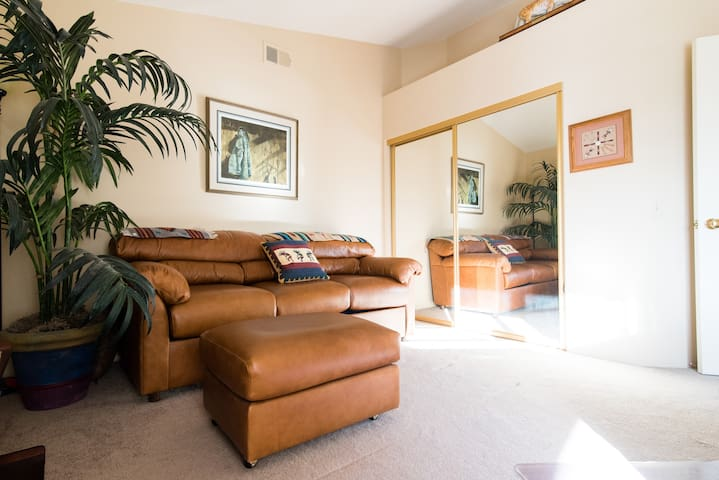 Large den/3rd bedroom w/Queen sofabed- comes with 2 foam  mattress toppers for extra comfort.