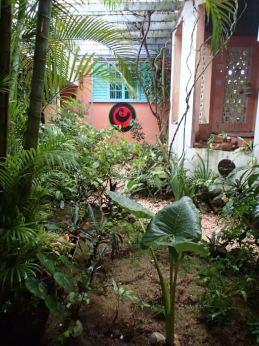 internal garden, sankofa rules, remember to return home to find what was missing or lost