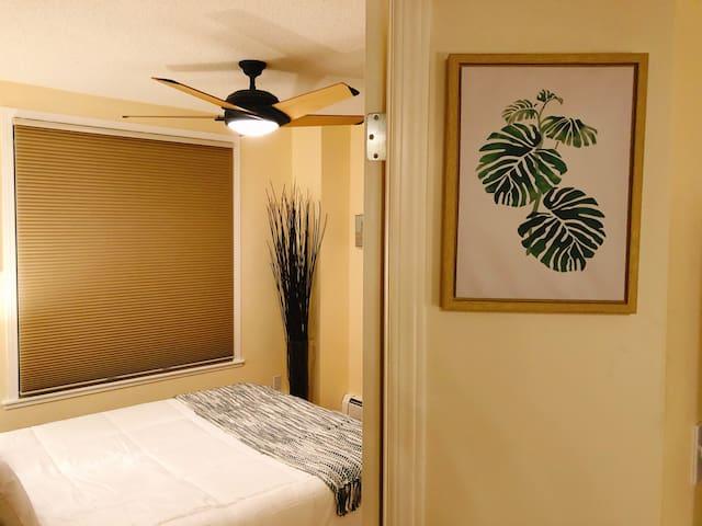 2 Bedrooms Downtown Condo (minimum one week stay)