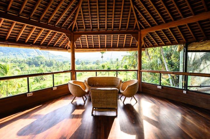 Luxury Eco Wellness Resort Villa 2