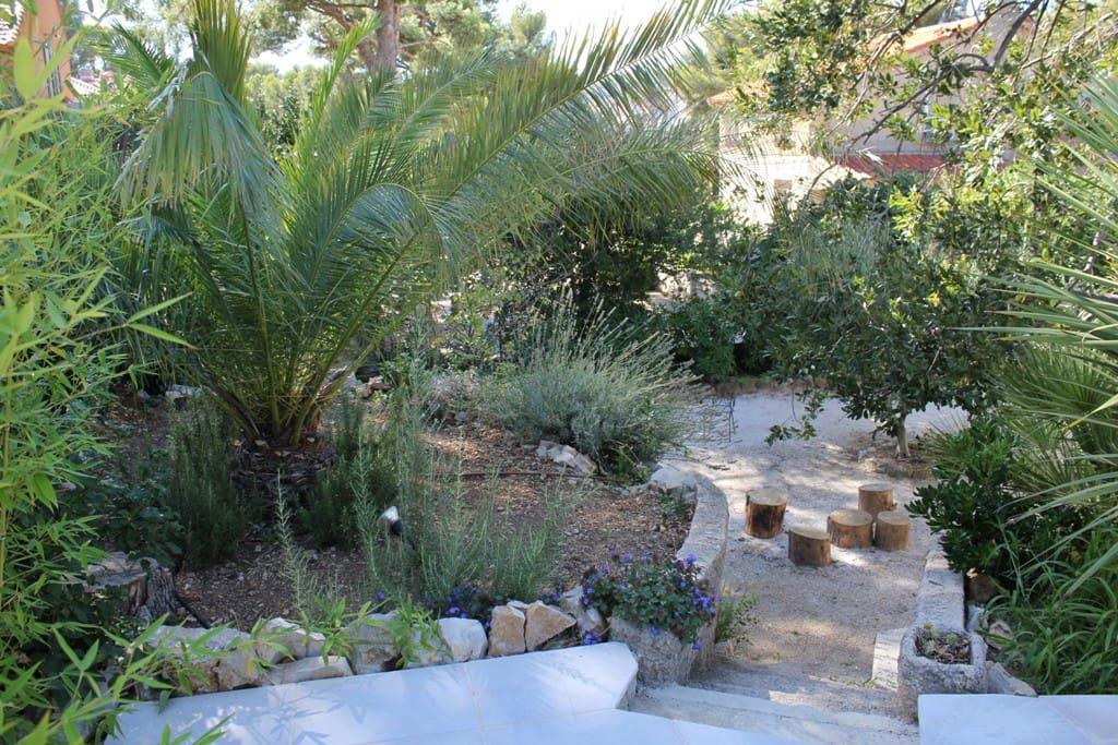 Jardin méditerranéen aux essences locales - Home Cassis