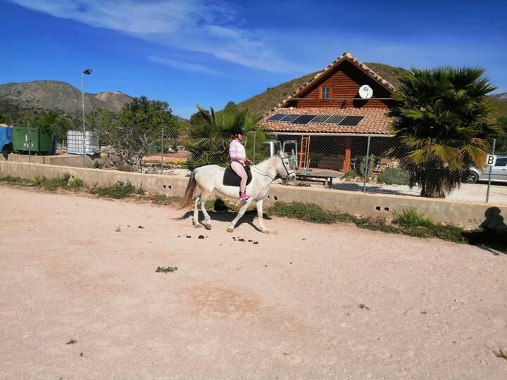 Habitación en rancho con caballos entre montañas
