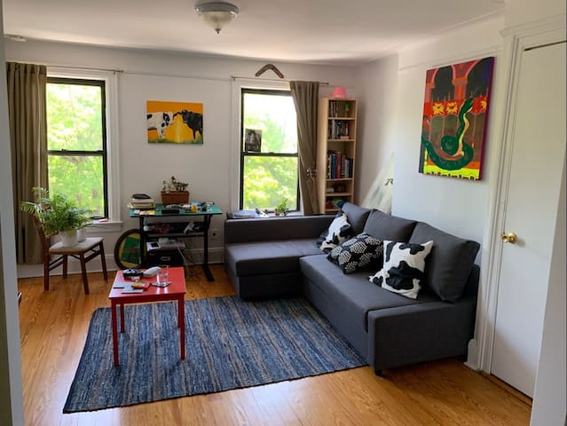 Big cozy apartment in the heart of Williamsburg!