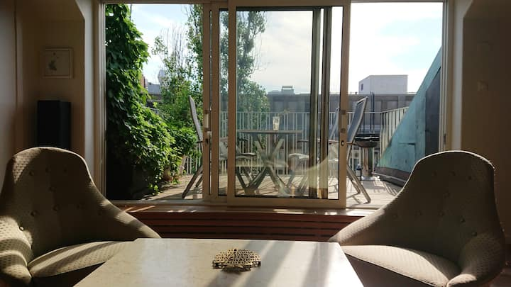 Luxury 6 room duplex apartment downtown Stockholm