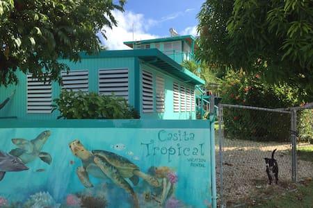 King Efficiency Apartment at Casita Tropical