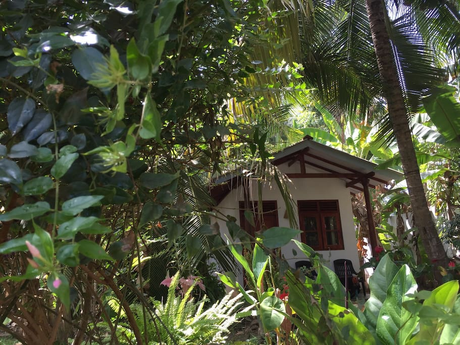 Your own private Cabana amongst the trees.