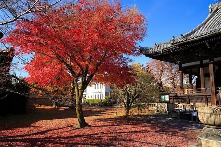 玄武 1BedSuite, Temple Lodgings in Ryuhonji  'Genbu'