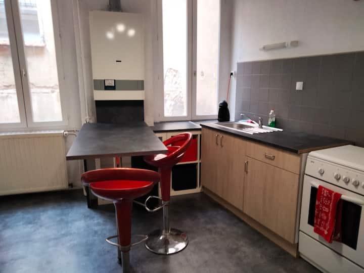 Appartement fraichement rénové au cœur de Roanne