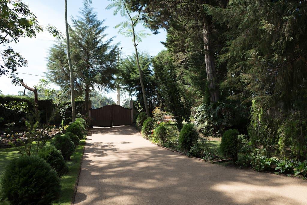 Stonyhurst driveway