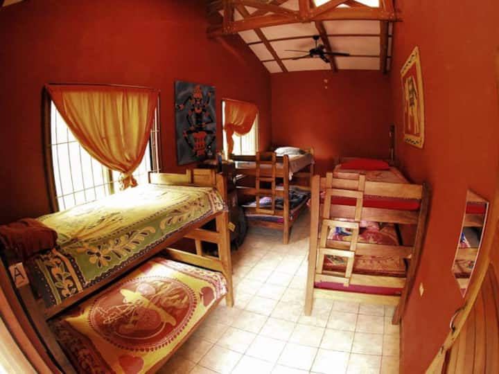 Solo Travelers - One bed in a dormitory