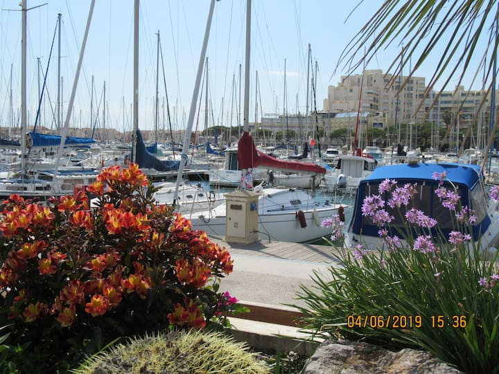 Joli studio à deux pas du port de Carnon Plage