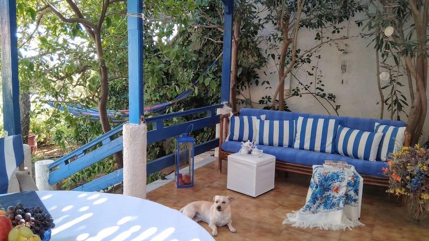 A Cretan house in a garden, overlooking the sea