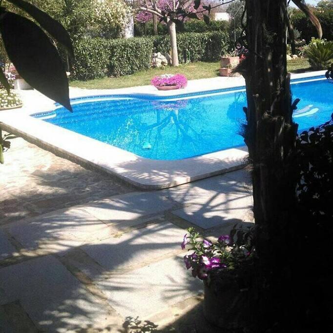 Casa de campo villafranca case in affitto a villafranca for Piscina villafranca