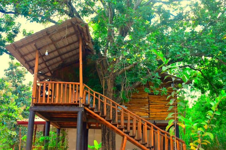 La Casa Udawalawe-The Wild Life Experience