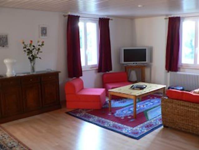 L'espace séjour, à droite un canapé-lit de 1,40 m de large