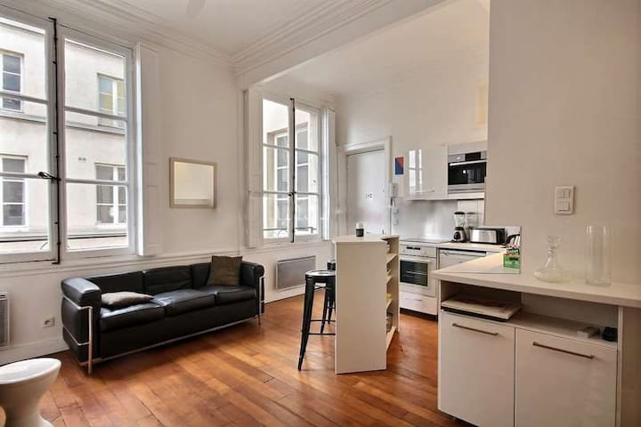 Living: The 20 square meters living room has 2 windows facing courtyard . It is equipped with : a bar with 2 bar stools, sofa, TV, decorative fireplace, hard wood floor.