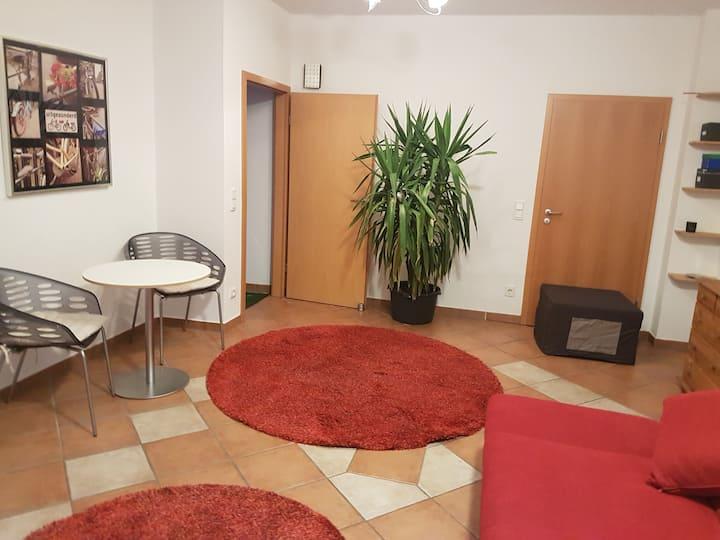 Großes Zimmer incl. Küche, WC, Dusche und Sauna