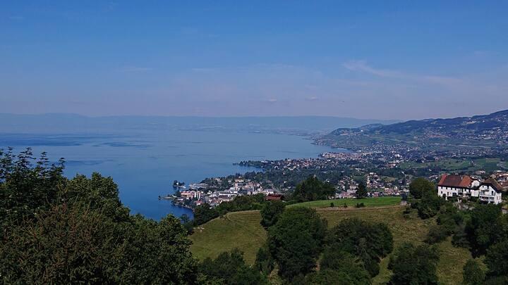 Montreux superbe appartement, calme-vue grandiose