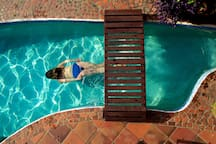 The swimming pool is solar assisted to close to ambient air temperatures.