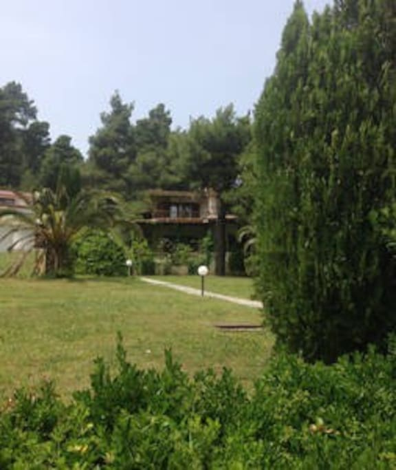 The front face of the villa into the woods and just 7 min walk to the blue sea :)
