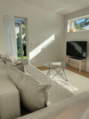 Soffa och tv