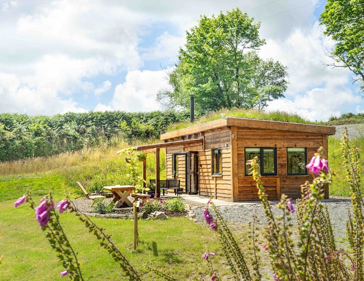 Grass roofed, oak framed cabin in woodland setting