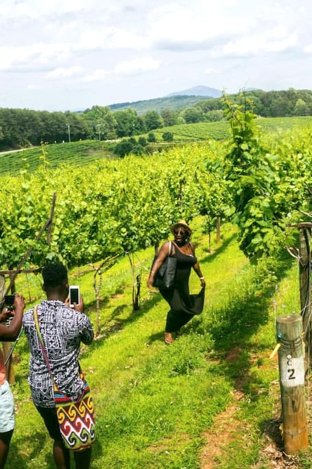 After drinking wine, explore the winery