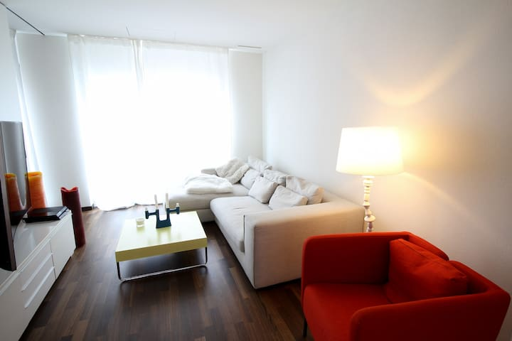 Modern and only minutes to Zurich - Dietikon - Flat