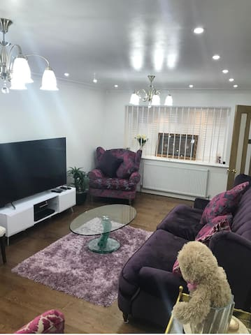 Lilac Home Ext.(Parking )V close to Metro,Tesco