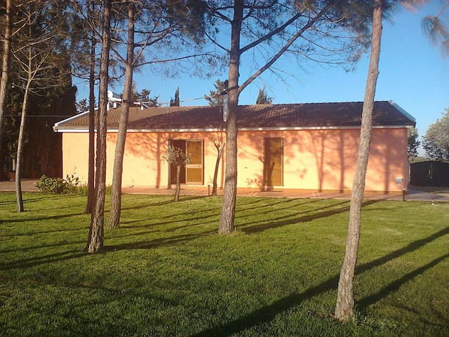 Casa Rosi Alghero appartamento 2