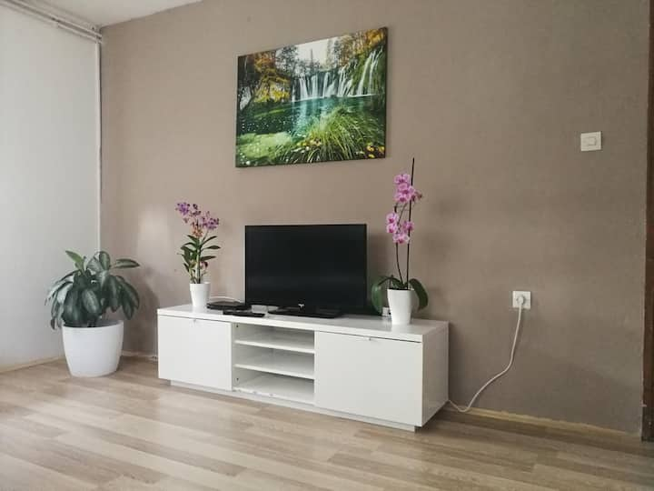 Two bedroom apartment with terrace Smoljanac, Plitvice (A-14979-b)